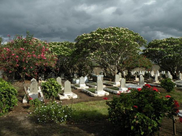 Polski cmentarz w Tengeru, 2009 r. /Centrum Dokumentacji Zsyłek, Wypędzeń i Przesiedleń Uniwersytetu Pedagogicznego /