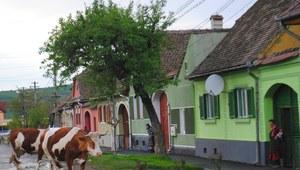 Polski kompleks wyższości, rumuński kompleks niższości