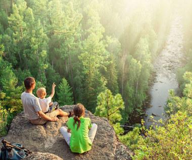 Polskie Parki Narodowe: Dlaczego warto je odwiedzić