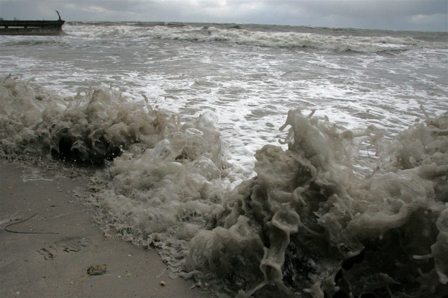 Pomorskie: Ostrzeżenie przed silnym wiatrem /zdjęcie archiwalne /RMF FM