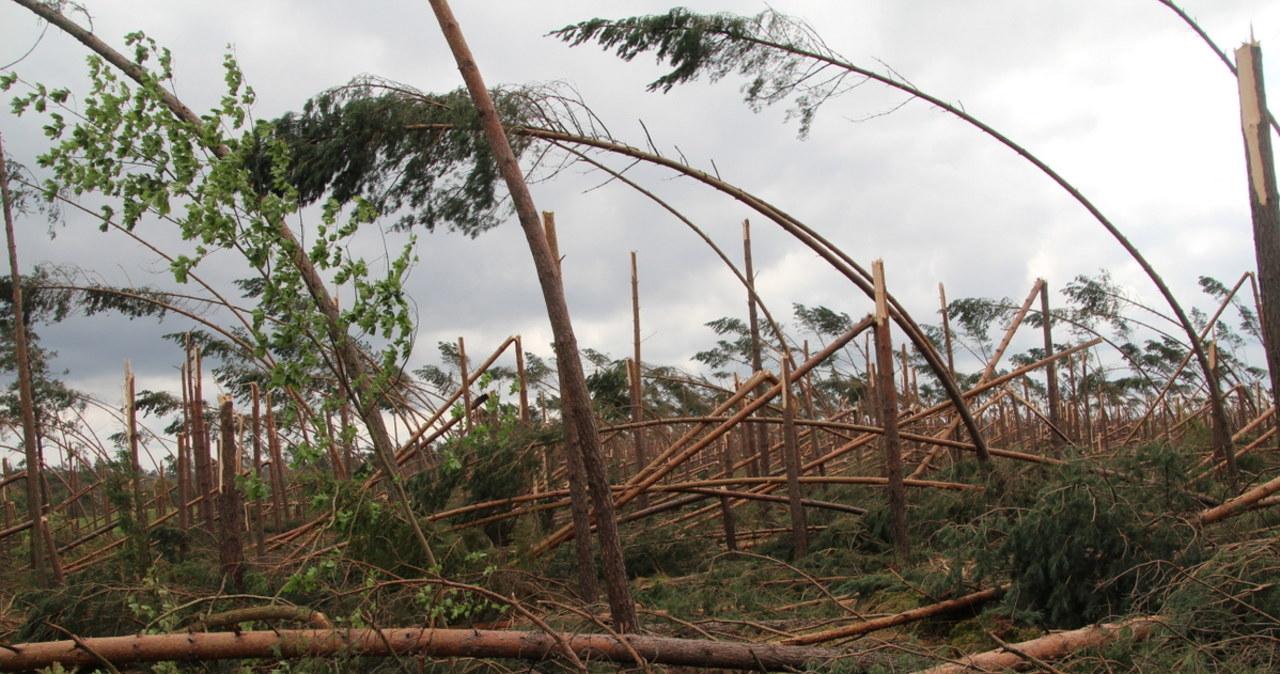 Pomorskie: Pięć ofiar nawałnic, rozległe zniszczenia