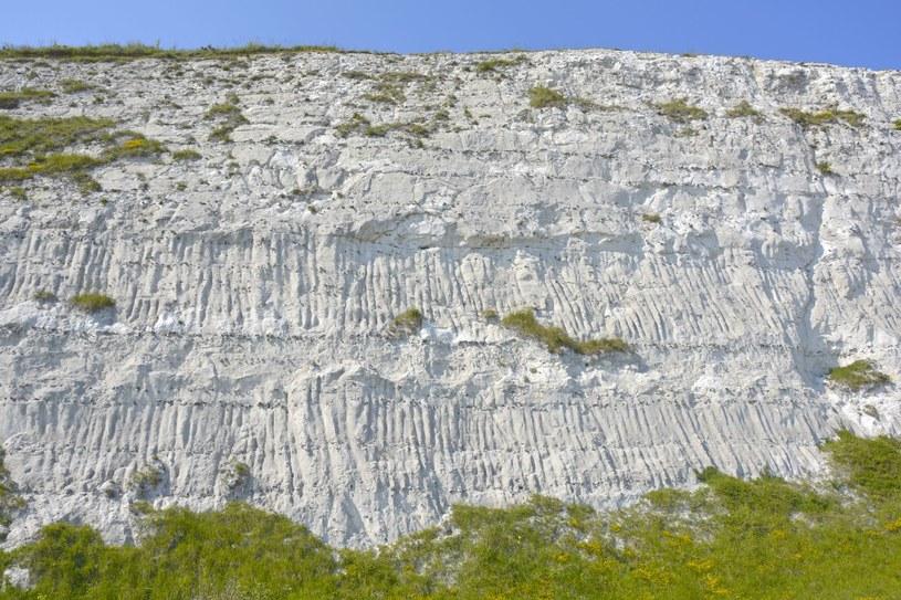 Pomost lądowy był połączony z obecnymi białymi klifami w Dover /123RF/PICSEL