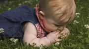 Pomysły na aktywny dzień z dzieckiem