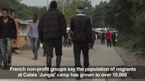 Ponad 10000 imigrantów żyje w obozie w Calais