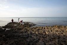 Ponad 5 tys. migrantów uratowano u wybrzeży Libii