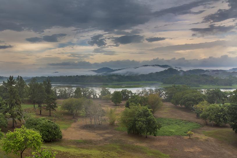 Pora sucha w parku narodowym w Chagres /123RF/PICSEL