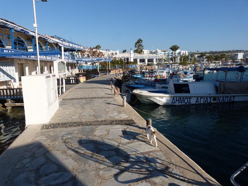 Port w Ayia Napa /INTERIA
