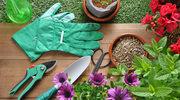 Porządki w ogrodzie: 5 przydatnych rad
