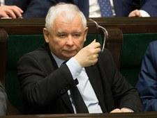 Posłanka PiS: Kaczyński jak Einstein i Obama