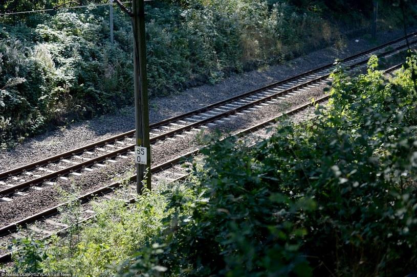 """Poszukiwania """"Złotego pociągu"""" w Wałbrzychu, zdj. ilustracyjne /Natalia Dobryszycka /East News"""
