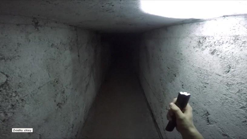 Potencjalnie ukrytą komnatę znaleziono na terenie bunkrów w Marmerkach. /STORYFUL/x-news