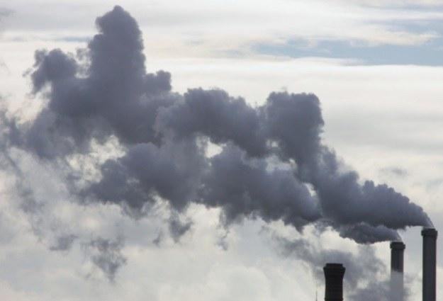 """""""Potrzebujemy prawdziwych cudów energetycznych"""" /AFP"""