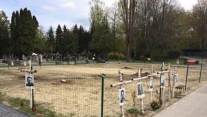 Powązki: Ruszył ostatni etap poszukiwań ofiar komunistów