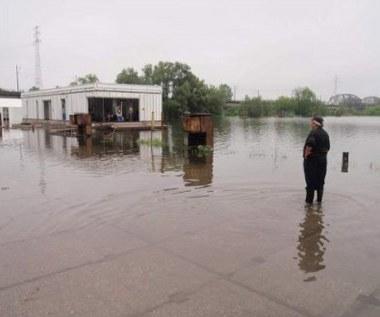 Powódź ucieszyła mieszkańca Wrocławia