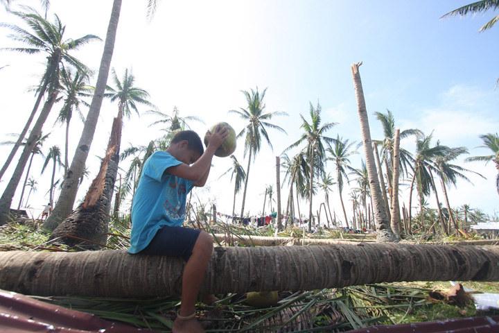 Powrót do stanu sprzed huraganu zajmie 25 lat. Zamiast palm, z ziemi wystają kikuty... /Getty Images/Flash Press Media