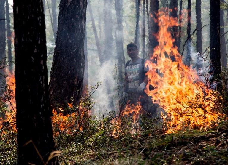 Pożar lasu na Syberii, niedaleko Bajkału /PETR SHELOMOVSKIY / AFP /AFP