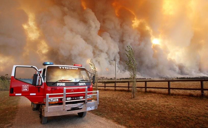 Pożar sprzed pięciu lat /AFP