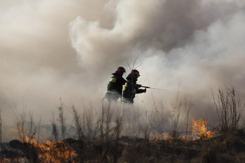 Pożar suchych traw na nieużytkach w Łomży, zdj. z 17.03.2015 /MAREK MALISZEWSKI/REPORTER /East News