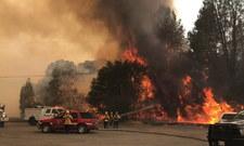 Pożary szaleją w Kalifornii i Nowym Meksyku