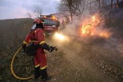 Pożary w Hiszpanii. Płonie 120 lasów