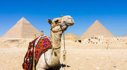 Poznaj największe zabytki starożytnego Egiptu