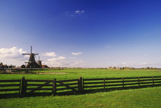 Praca w Holandii? Nie daj się oszukać! /© Glowimages