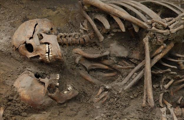 Prace ekshumacyjne IPN - odkryto kolejną jamę grobową (zdjęcie ilustracyjne) /Stefan Maszewski /Reporter