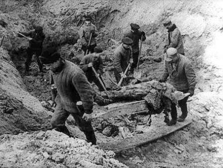 Prace ekshumacyjne w Lesie Katyńskim /Odkrywca