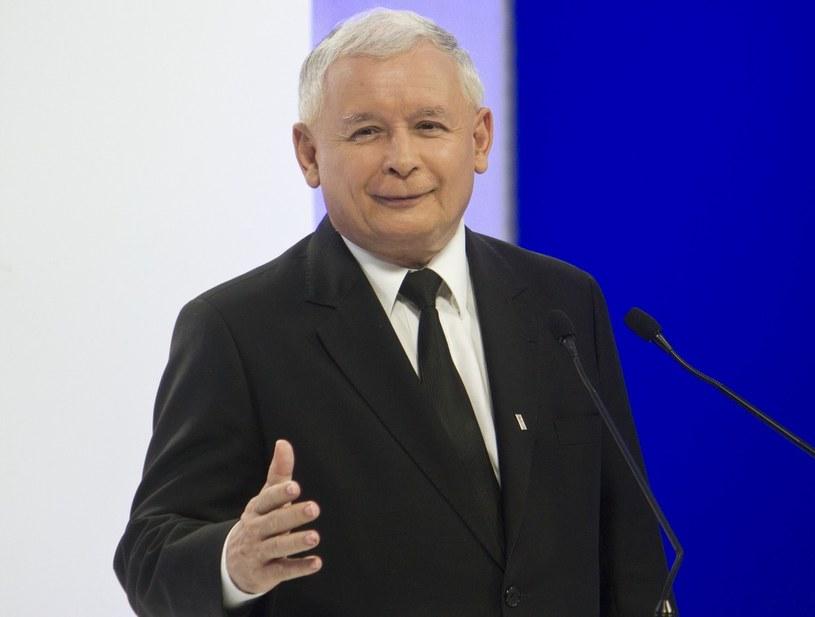 Prace nad programem PiS finalizował sam prezes /Krystian Dobuszyński /Reporter