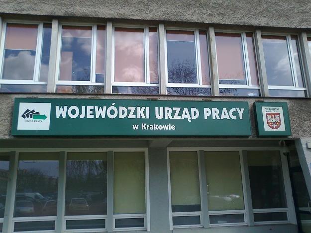 Pracodawcy nie mogą dziś złożyć oferty w dwóch urzędach pracy. Fot. Krzysztof Mrówka /INTERIA.PL