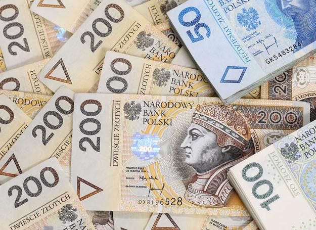 Prawdziwych pieniędzy w walizce było tylko dziewięć tysięcy /123RF/PICSEL