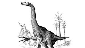 Prehistoryczne potwory żyją do dziś?