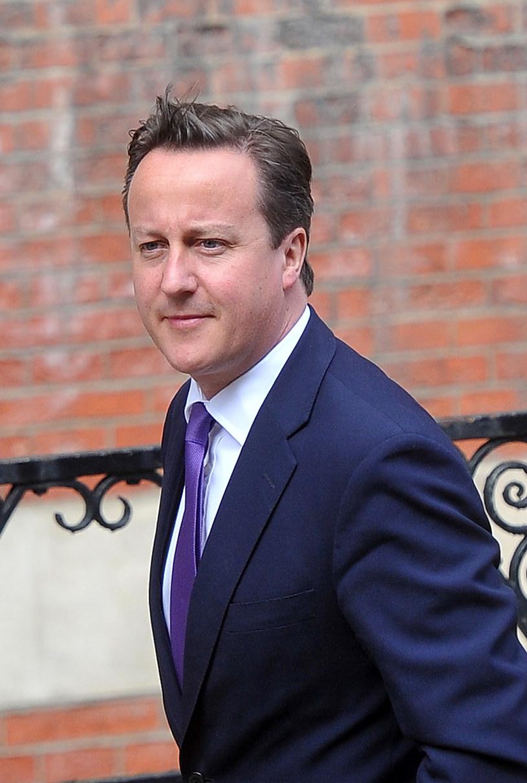 Premier David Cameron niedawno wprowadził kontrowersyjny program pilotażowy kursów rodzicielstwa /  - /Getty Images