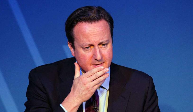 Premier Wielkiej Brytanii David Cameron. /AFP