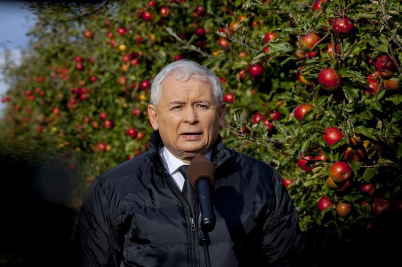 Prezes PiS był dzisiaj w woj. świętokrzyskim /Michał Walczak /PAP