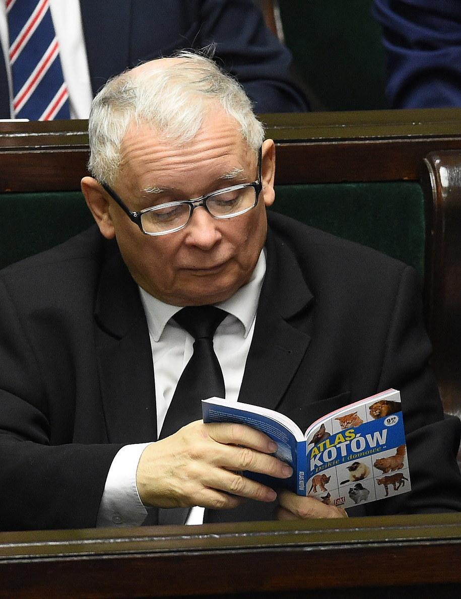 Prezes PiS Jarosław Kaczyński na sali sejmowej /Radek Pietruszka /PAP