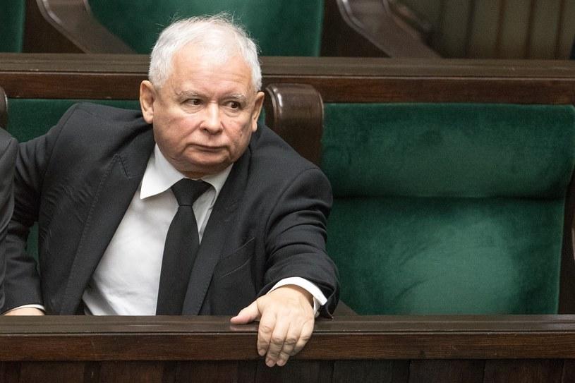 Prezes PiS Jarosław Kaczyński /Andrzej Iwańczuk /Reporter