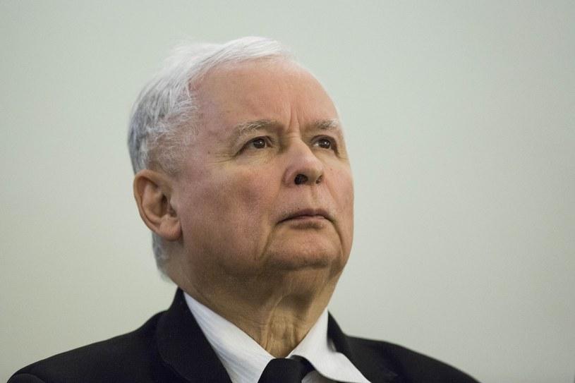 Prezes PiS Jarosław Kaczyński /Andrzej Hulimka  /Reporter