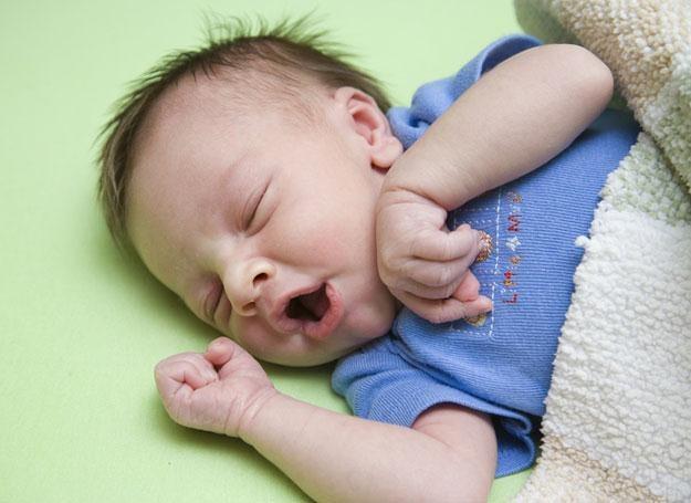 Problemy z wieczornym usypianiem ma ponad 20 procent kilkumiesięcznych smyków /© Panthermedia