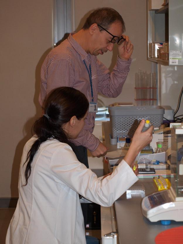 Prof. dr hab. Adam Lesner i dr Natalia Gruba w trakcie badań (fot. UG) /&nbsp