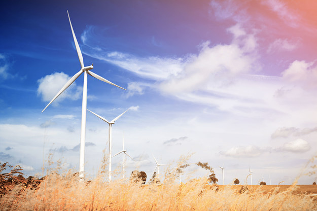 Program PBSE zakłada wzrost innowacyjności krajowego sektora elektroenergetycznego w perspektywie 2023 roku /123RF/PICSEL