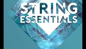Projekt 704 - Strings Essentials 92BPM - 2016