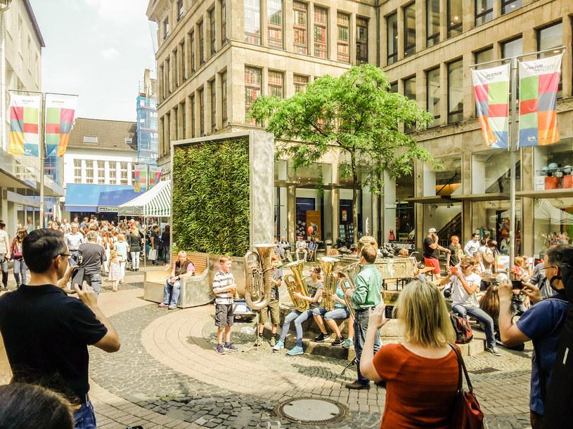 Projekt CityTree z Niemiec został zwycięzcą Smogathonu i wygrał 100 tys. zł na rozwój antysmogowego projektu /smogathon.com /