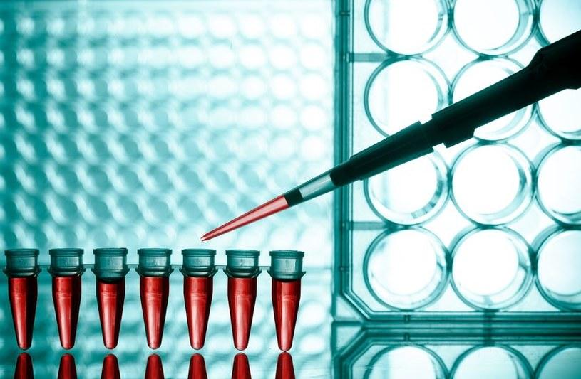 Prosty test krwi wykryje wszystkie nowotwory /©123RF/PICSEL