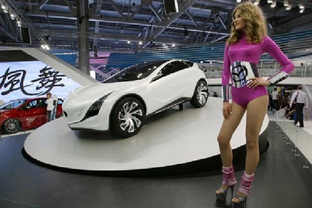 Prototyp o nazwie kazamai zaprezentowano w 2008 roku /AFP