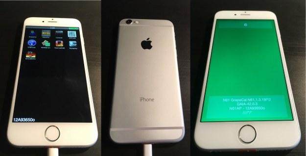 Prototypowy iPhone 6 /materiały prasowe