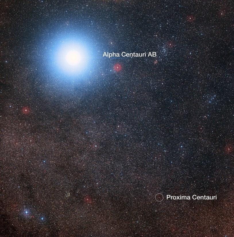 Proxima Centauri widoczna w pobliżu dużo jaśniejszej Alpha Centauri AB /materiały prasowe