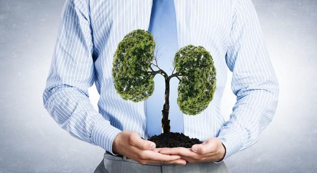 Przyczynami wywołującymi odmę opłucną są również różne choroby. /123/RF PICSEL