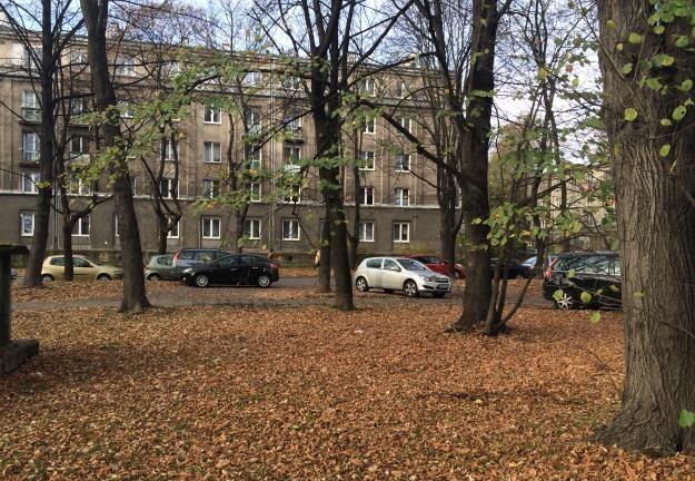 Przykładowe zdjęcie wykonane iPhone 5s na zewnątrz /INTERIA.PL