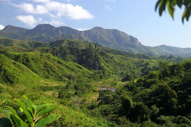 Przyroda Madagaskaru na pewno cię zachwyci /123/RF PICSEL
